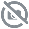 Kit vis origine carter Triumph.T120.T140.1969.84.